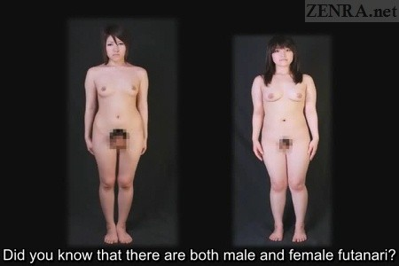 Male and female futanari