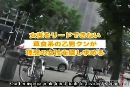 Japanese herbivorous men nanpa