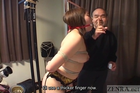 Japanese woman only in garter belt and nose hooks bound