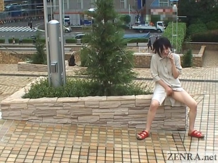 Japanese phone masturbation in public