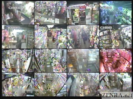 security cameras at adult good store