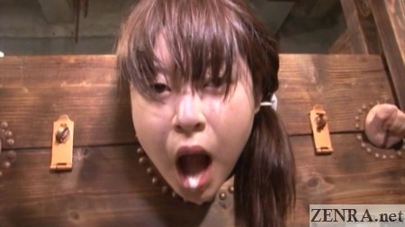 the japanese human toilet syndrome