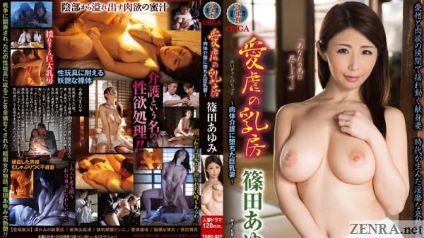 ayumi shinoda a showa tale of an amorous caregiver
