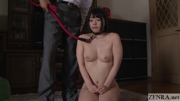 japanese cmnf master slave play