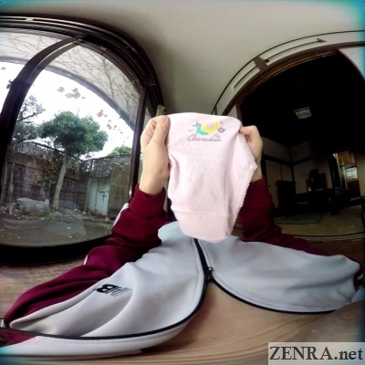 japanese vr playing with schoolgirl panties