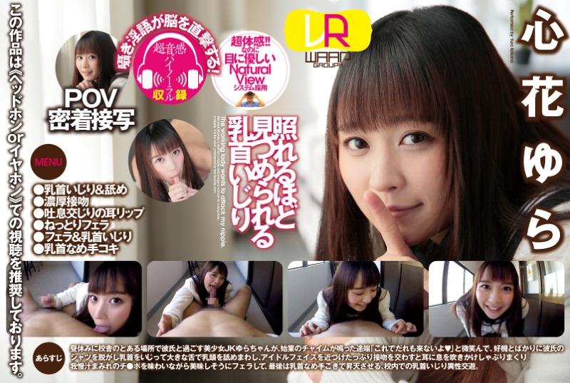 yura kokona the schoolgirl who cannot get enough of you