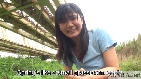 looking for grass to eat homeless problems japan